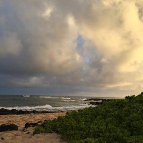 Wir heilen in Wellen