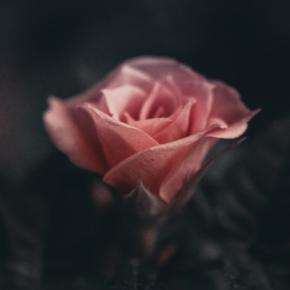 Geschenke der Dunkelheit & Mystik für Frauen (+geführte Meditation)